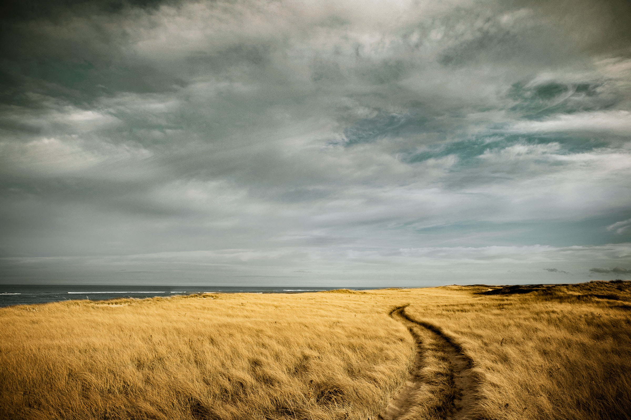 Path through high grass on a stormy beach.